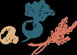 Sheradyn-Dekker-branding-icons